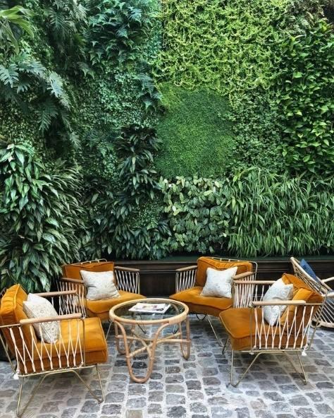 photo mur végétal